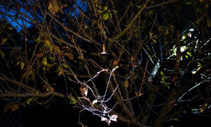 Nâng tầm không gian sân vườn bằng đèn trang trí cao cấp FX Luminaire